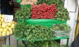 کشت سبزیجات آلوده در تهران نداریم