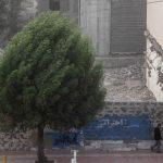 وزش باد شدید و کاهش آلودگی در تهران